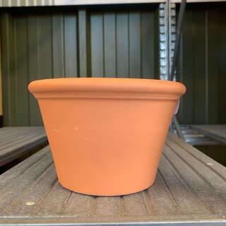 Mini Border Pot 17cm