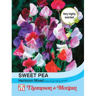 Sweet Pea Heirloom Mix