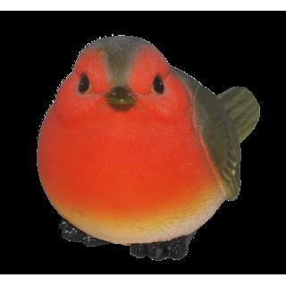 Robin Medium D