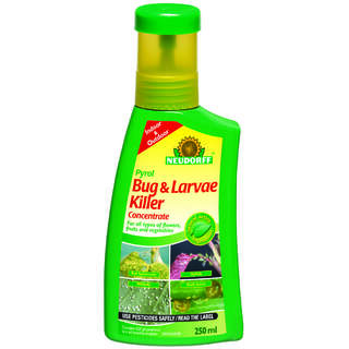 Bugfree Bug and Larve Kill 250ml Concentrate