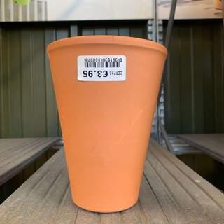 Rose Pot 15cm