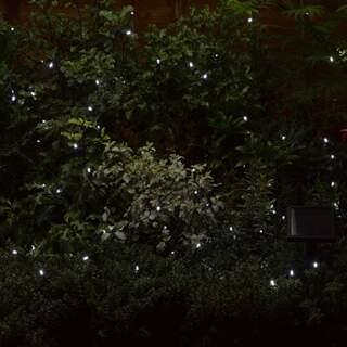 100 Cool White LEDs String Lights