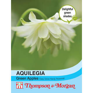 Aquilegia Green Apples