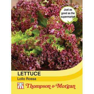 Lettuce Lollo Rossa