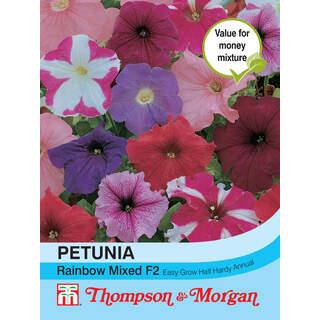 Petunia Rainbow Mixed F2 Hybr