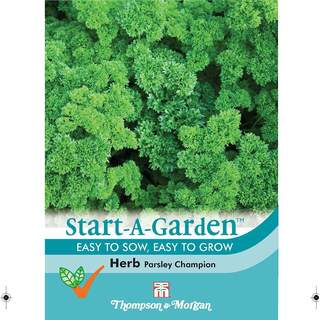 Herb Parsley Champion