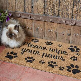 Wipe Your Paws 45 x 75 cm