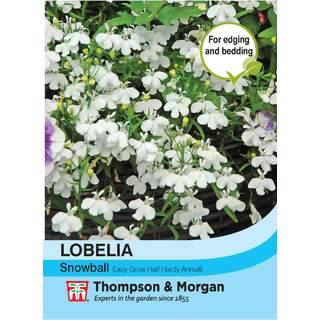 Lobelia Snowball