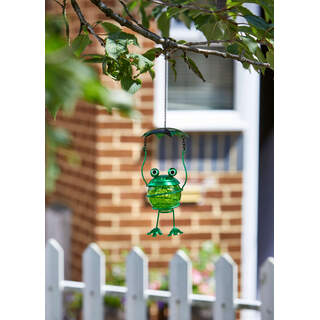 Bouncy Frog