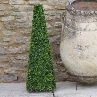 Topiary Boxwood Obelisk 60cm