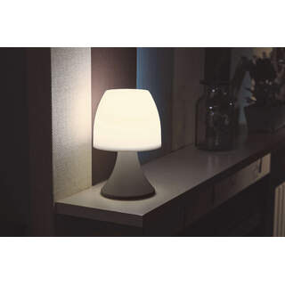 Lumina Table Lamp 10L