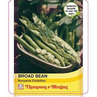 Broad Bean Bunyards Exhibitio