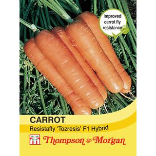 Carrot Resistafly F1