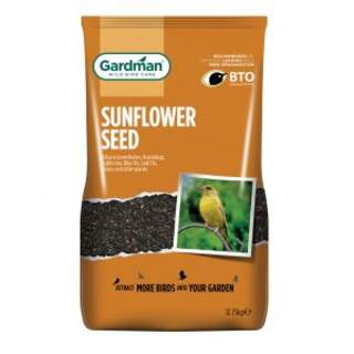 Black Sunflowers Seeds
