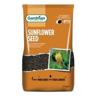 Black Sunflowers Seeds