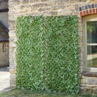 Ivy Leaf Trellis 180 x 60 cm