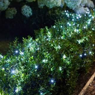 200 Cool White LEDs String Lights