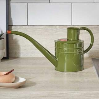 Home and Balcony Watering Can Sage 1L