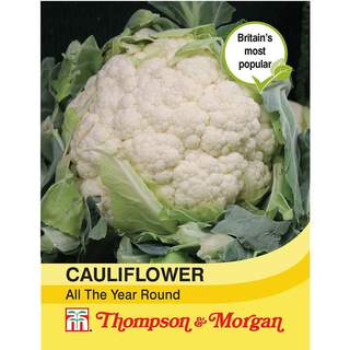 Cauliflower All The Year Roun