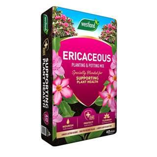 Westland Ericaceous Planting and Potting Mix