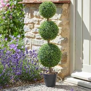 Trio Topiary Tree 80 cm