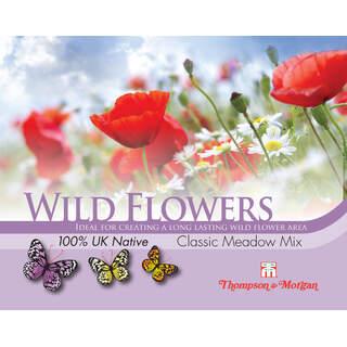 Wild Flower Classic Meadow