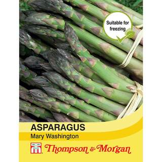 Asparagus Martha Washington