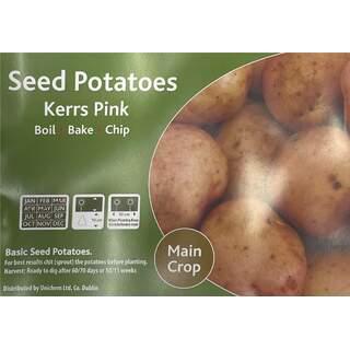 Kerrs Pink Maincrop 2Kg