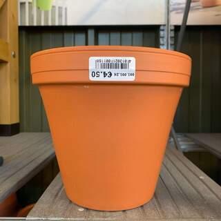 Standard Pot 22 / 24cm