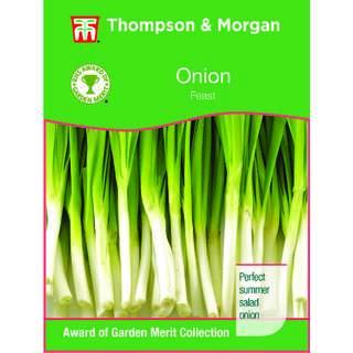 Onion Feast F1