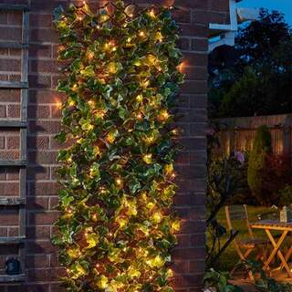 Solar In Lit Ivy Trellis 50 LED