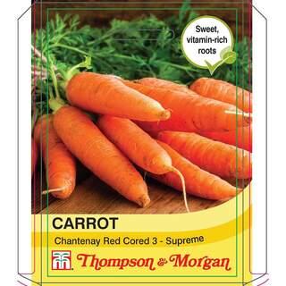 Carrot Chantenay Red Chored 3