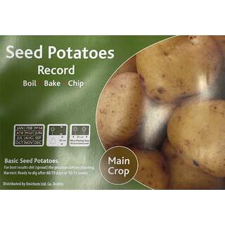 Records Maincrop 2Kg