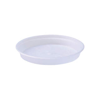 green basics orchid saucer 14cm transparent