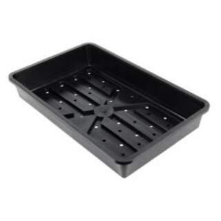 Rigid Standard Seed Tray