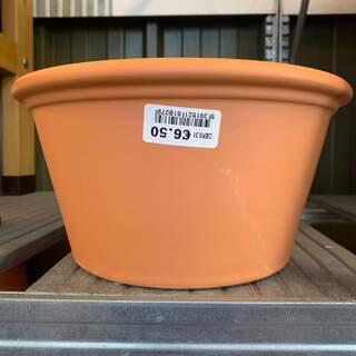 Mini Border Pot 31cm