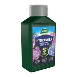 Westland Hydrangea Specialist Liquid Feed 1L