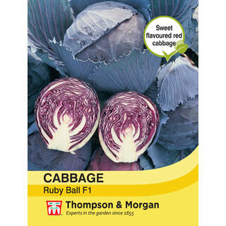 Cabbage Ruby Ball F1 Hybrid
